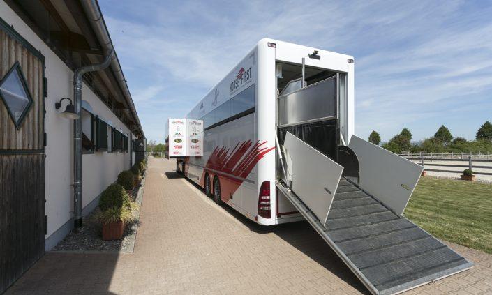 Horsetruck Alexander Schill - transport