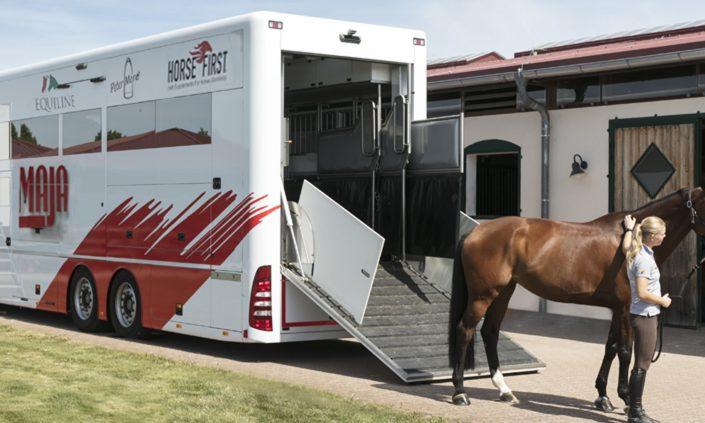 Pferdetransporter - Spezialfahrzeug